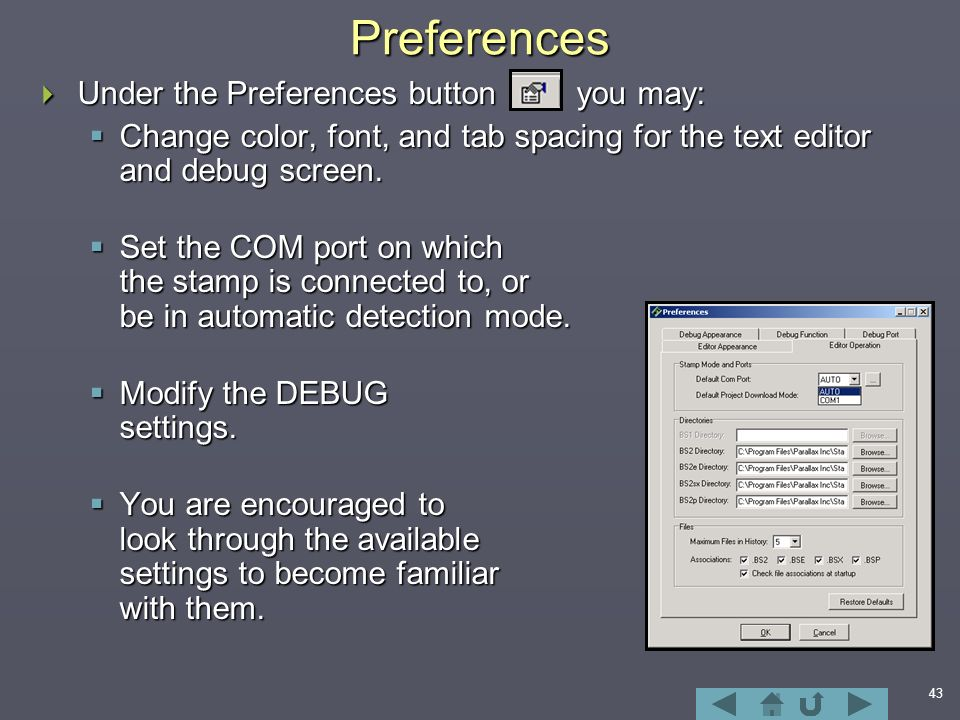 43Preferences  Under the Preferences button you may:  Change color, font, and tab spacing for the text editor and debug screen.