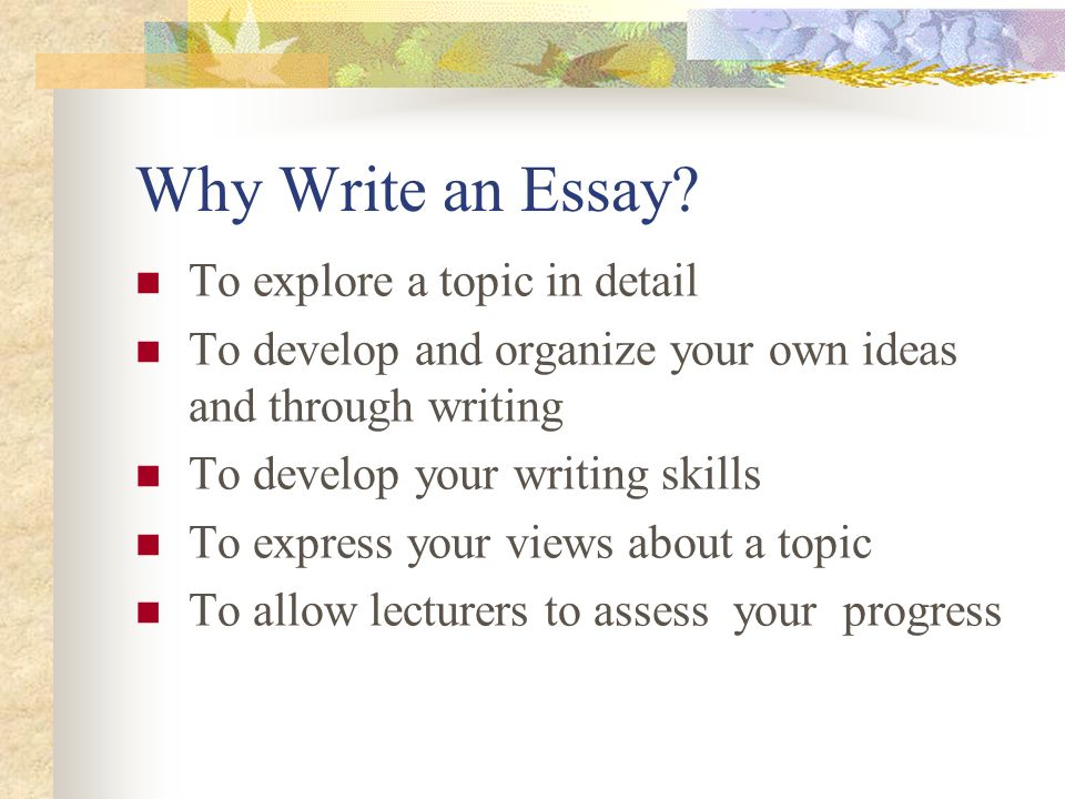 Dr Malinda Hill Advanced English Ca Designing Essays Research  Why Write An Essay