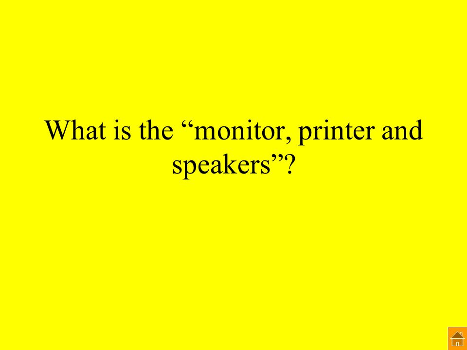 What is the monitor, printer and speakers