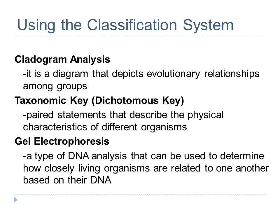 Using the Classification System Cladogram Analysis -it is a diagram that depicts evolutionary relationships among groups Taxonomic Key (Dichotomous Key) -paired statements that describe the physical characteristics of different organisms Gel Electrophoresis -a type of DNA analysis that can be used to determine how closely living organisms are related to one another based on their DNA