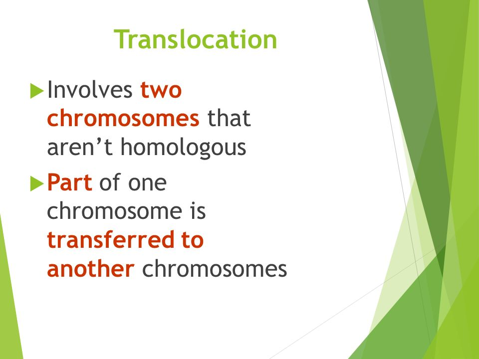 Translocation  Involves two chromosomes that aren't homologous  Part of one chromosome is transferred to another chromosomes
