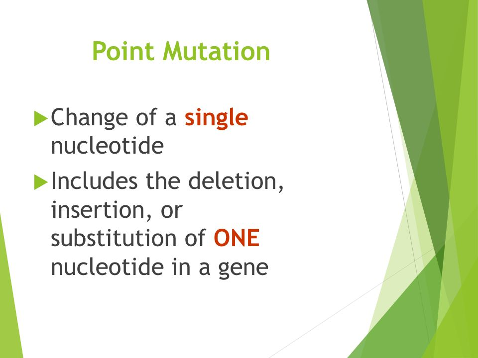 Point Mutation  Change of a single nucleotide  Includes the deletion, insertion, or substitution of ONE nucleotide in a gene
