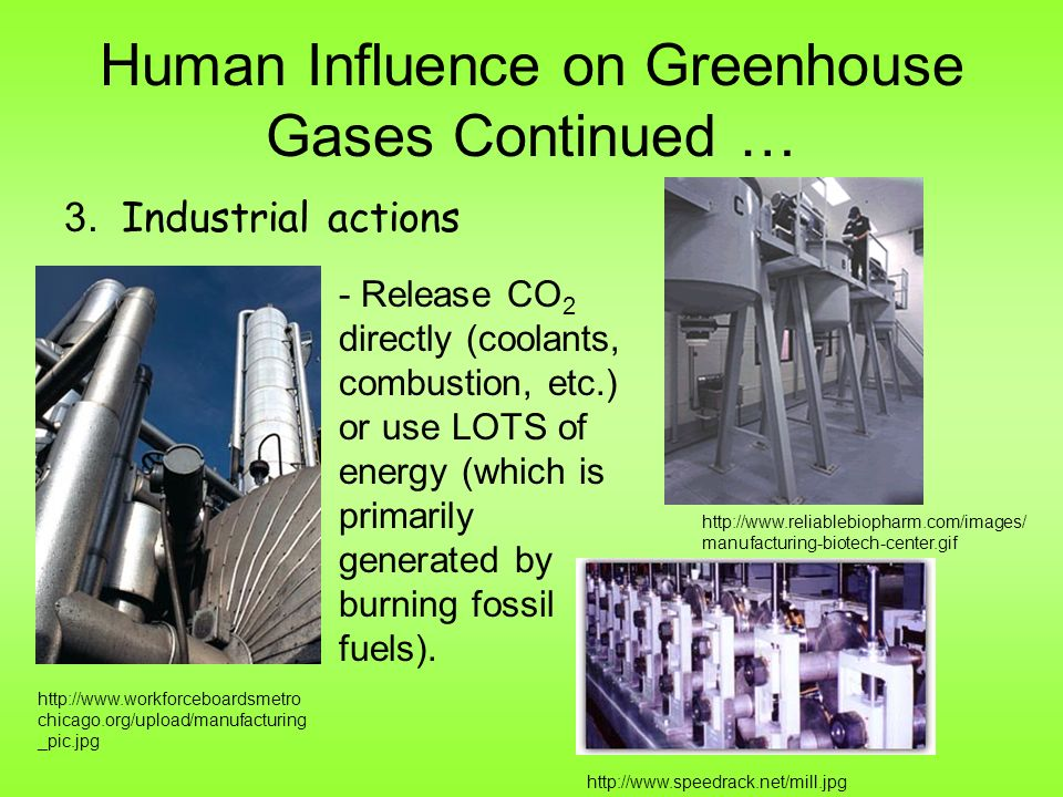 Human Influence on Greenhouse Gases Continued … 3.