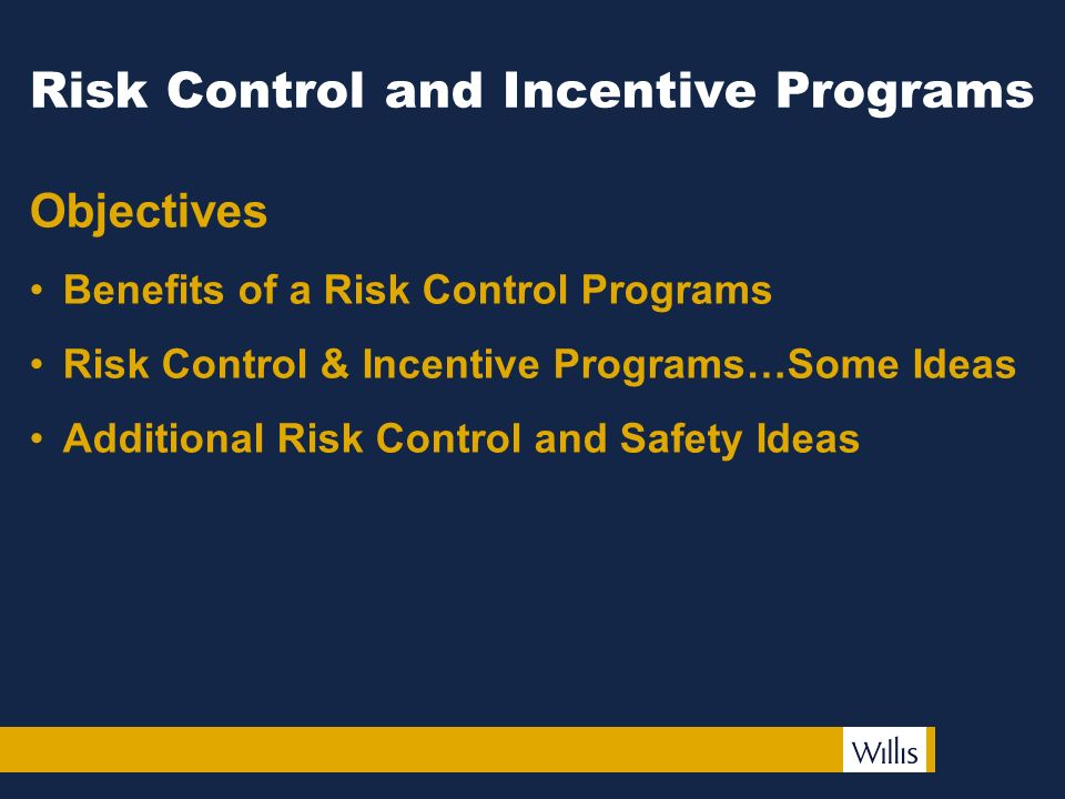 2 risk control and incentive programs objectives benefits of a risk control programs risk control incentive programssome ideas additional risk control