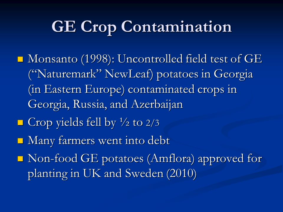 GE Crop Contamination Monsanto (1998): Uncontrolled field test of GE ( Naturemark NewLeaf) potatoes in Georgia (in Eastern Europe) contaminated crops in Georgia, Russia, and Azerbaijan Monsanto (1998): Uncontrolled field test of GE ( Naturemark NewLeaf) potatoes in Georgia (in Eastern Europe) contaminated crops in Georgia, Russia, and Azerbaijan Crop yields fell by ½ to 2/3 Crop yields fell by ½ to 2/3 Many farmers went into debt Many farmers went into debt Non-food GE potatoes (Amflora) approved for planting in UK and Sweden (2010) Non-food GE potatoes (Amflora) approved for planting in UK and Sweden (2010)