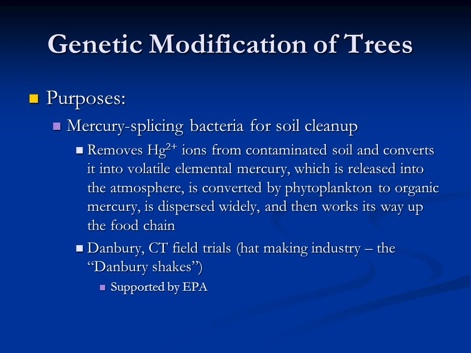 Genetic Modification of Trees Purposes: Purposes: Mercury-splicing bacteria for soil cleanup Mercury-splicing bacteria for soil cleanup Removes Hg 2+ ions from contaminated soil and converts it into volatile elemental mercury, which is released into the atmosphere, is converted by phytoplankton to organic mercury, is dispersed widely, and then works its way up the food chain Removes Hg 2+ ions from contaminated soil and converts it into volatile elemental mercury, which is released into the atmosphere, is converted by phytoplankton to organic mercury, is dispersed widely, and then works its way up the food chain Danbury, CT field trials (hat making industry – the Danbury shakes ) Danbury, CT field trials (hat making industry – the Danbury shakes ) Supported by EPA Supported by EPA