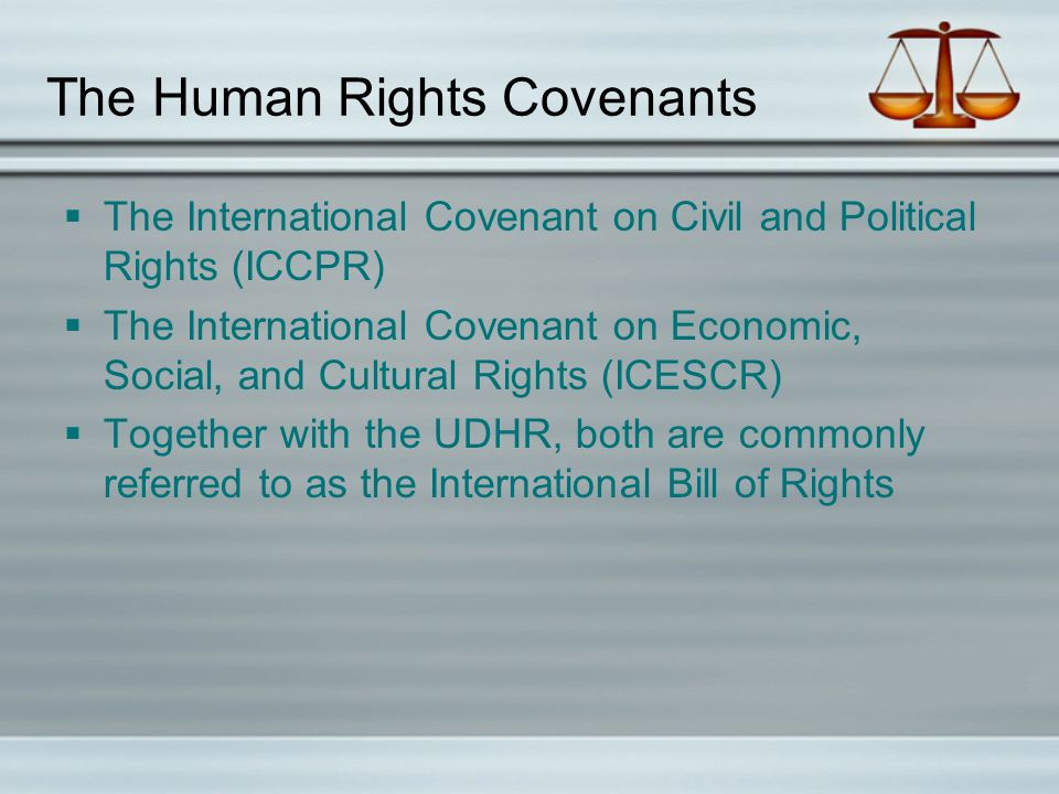 The Human Rights Covenants  The International Covenant on Civil and Political Rights (ICCPR)  The International Covenant on Economic, Social, and Cultural Rights (ICESCR)  Together with the UDHR, both are commonly referred to as the International Bill of Rights
