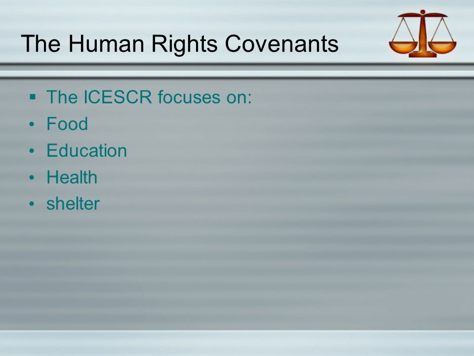 The Human Rights Covenants  The ICESCR focuses on: Food Education Health shelter