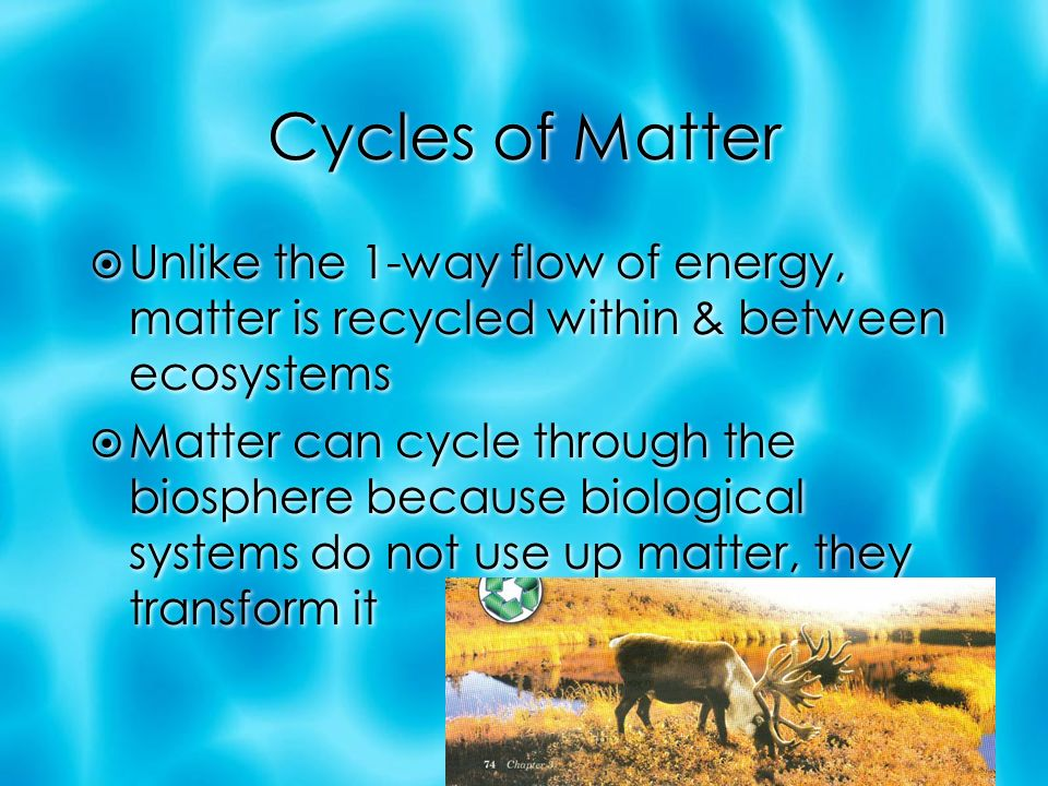 Cycles of Matter  Unlike the 1-way flow of energy, matter is recycled within & between ecosystems  Matter can cycle through the biosphere because biological systems do not use up matter, they transform it  Unlike the 1-way flow of energy, matter is recycled within & between ecosystems  Matter can cycle through the biosphere because biological systems do not use up matter, they transform it