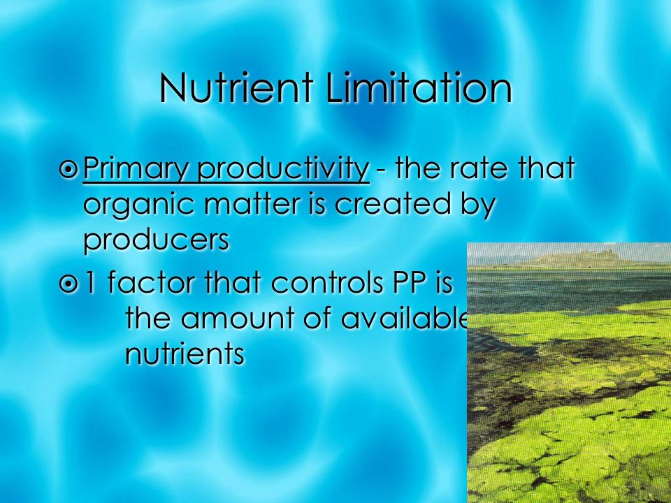 Nutrient Limitation  Primary productivity - the rate that organic matter is created by producers  1 factor that controls PP is the amount of available nutrients  Primary productivity - the rate that organic matter is created by producers  1 factor that controls PP is the amount of available nutrients