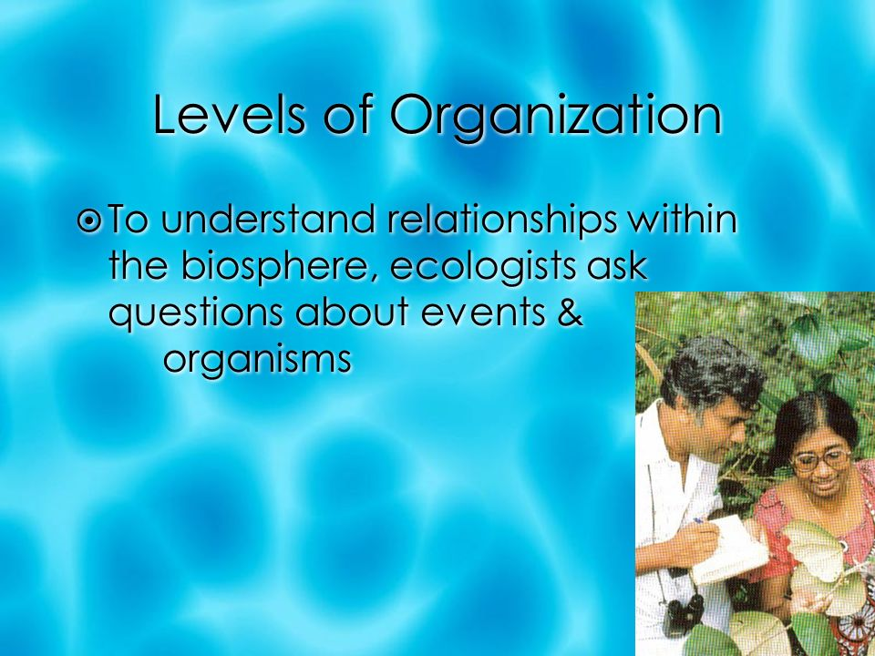 Levels of Organization  To understand relationships within the biosphere, ecologists ask questions about events & organisms