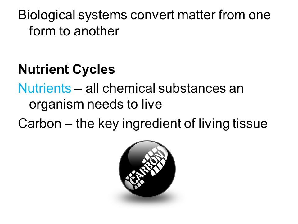 Biological systems convert matter from one form to another Nutrient Cycles Nutrients – all chemical substances an organism needs to live Carbon – the key ingredient of living tissue