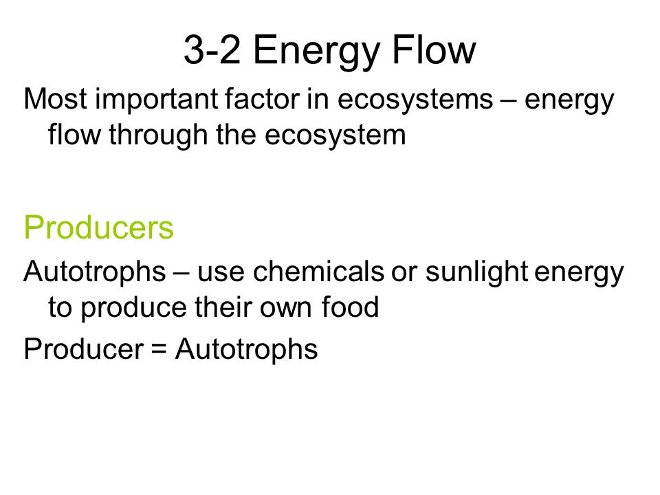 3-2 Energy Flow Most important factor in ecosystems – energy flow through the ecosystem Producers Autotrophs – use chemicals or sunlight energy to produce their own food Producer = Autotrophs