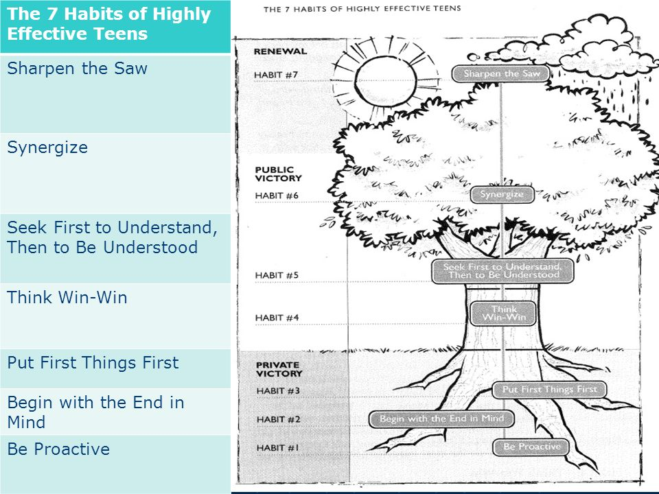 The 7 Habits of Highly Effective Teens Sharpen the Saw Synergize – 7 Habits of Highly Effective Teens Worksheets
