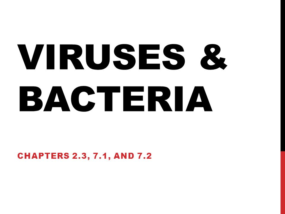 VIRUSES & BACTERIA CHAPTERS 2.3, 7.1, AND 7.2