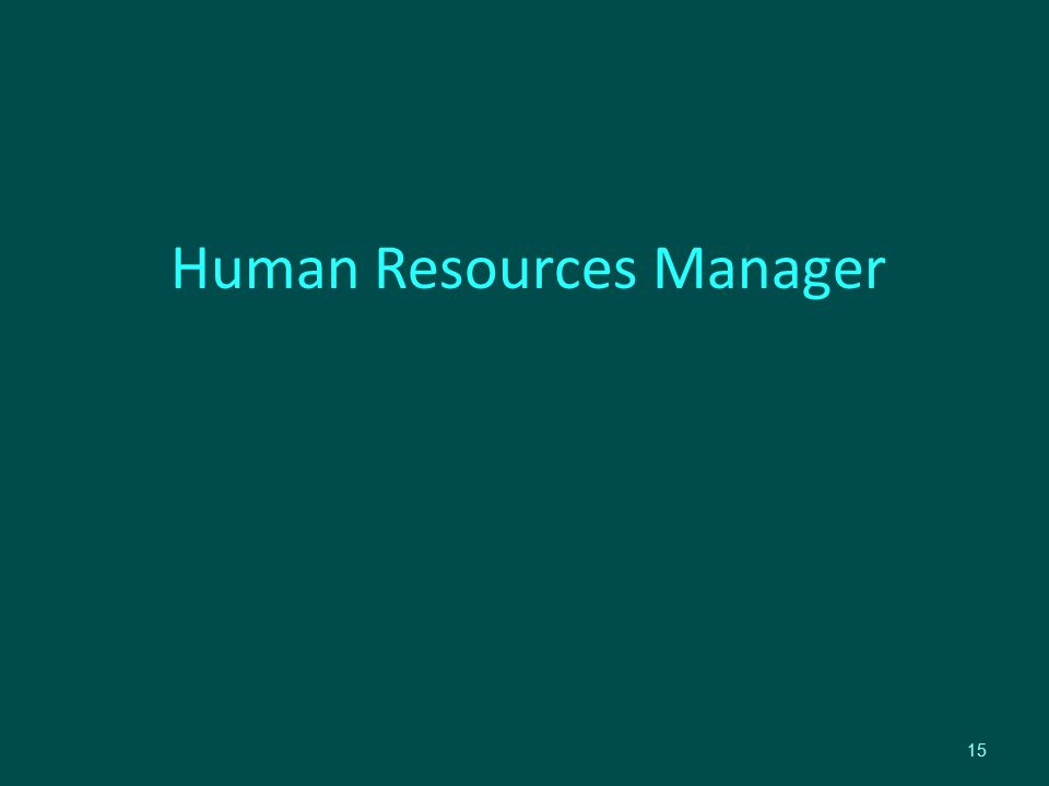 Human Resources Manager 15