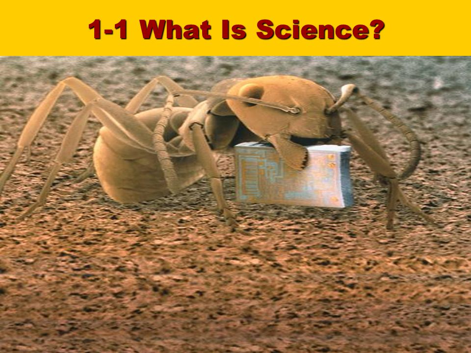 Slide 2 of What Is Science