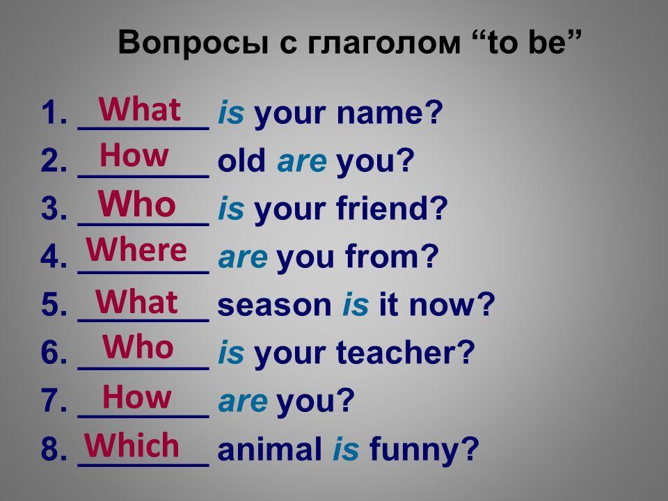 Общие вопросы в английском Примеры и схемы Grammarteicom