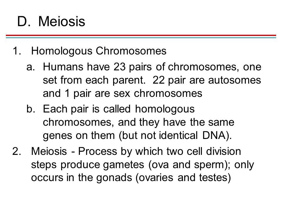 D.Meiosis 1.Homologous Chromosomes a.Humans have 23 pairs of chromosomes, one set from each parent.