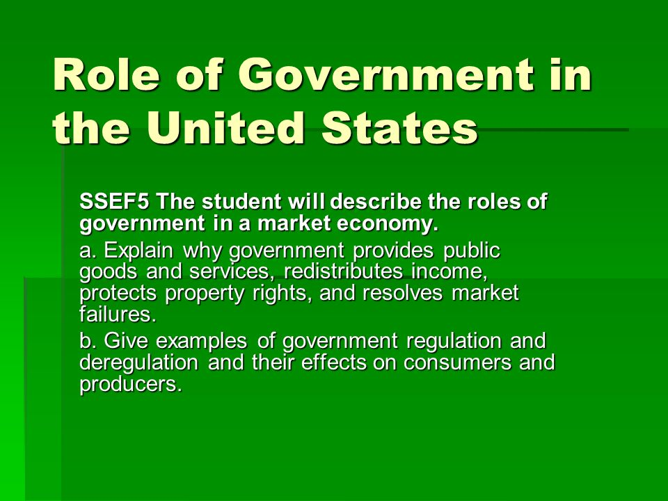 the role of government in the