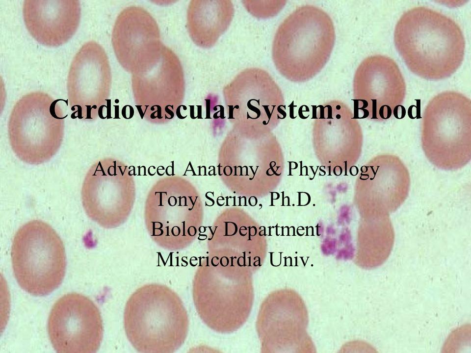 Cardiovascular System: Blood Advanced Anatomy & Physiology Tony ...