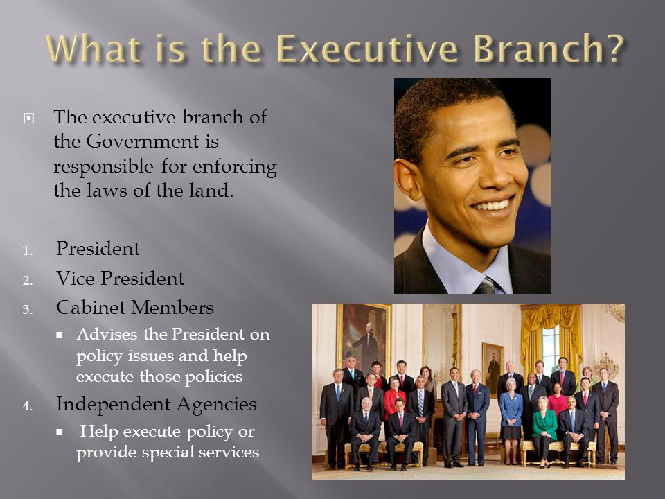  The executive branch of the Government is responsible for enforcing the laws of the land.