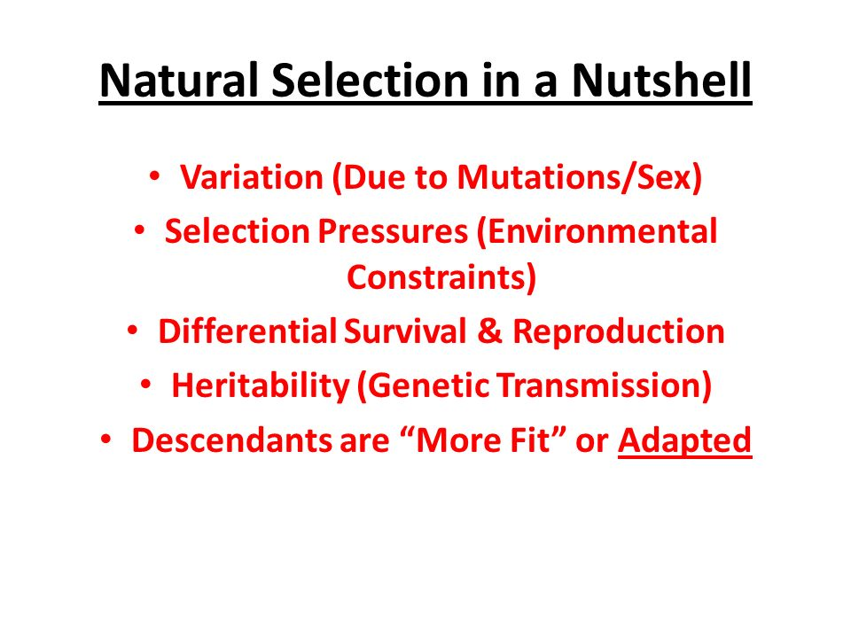 Natural Selection Natural Selection In A Nutshell Variation Due - 23 examples natural selection work