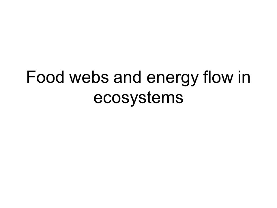 Food webs and energy flow in ecosystems
