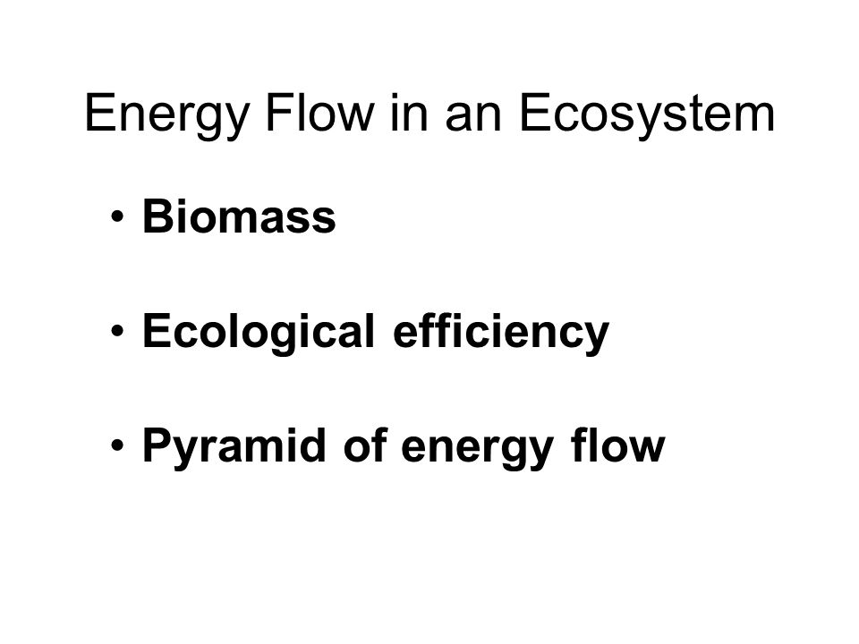 Energy Flow in an Ecosystem Biomass Ecological efficiency Pyramid of energy flow