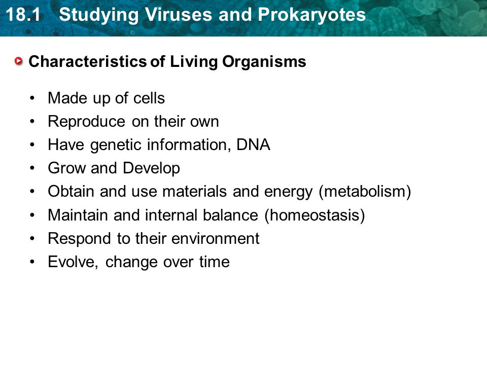 18.1 Studying Viruses and Prokaryotes Characteristics of Living Organisms Made up of cells Reproduce on their own Have genetic information, DNA Grow and Develop Obtain and use materials and energy (metabolism) Maintain and internal balance (homeostasis) Respond to their environment Evolve, change over time