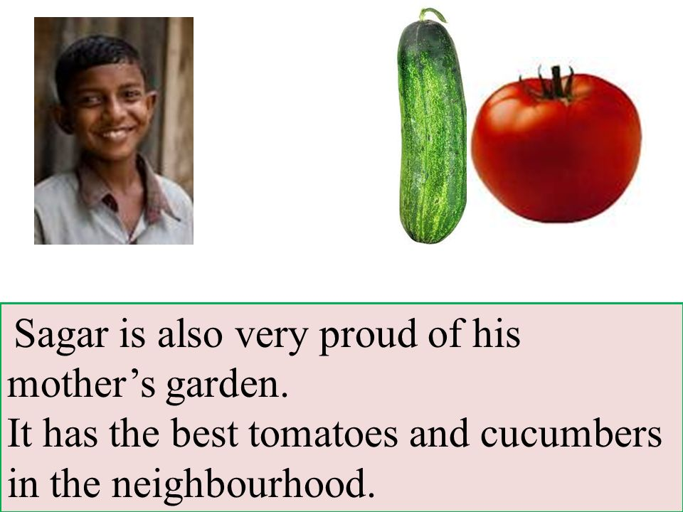 Sagar is also very proud of his mother's garden.