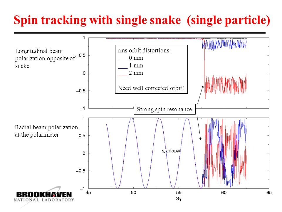 Spin tracking with single snake (single particle) Longitudinal beam polarization opposite of snake Radial beam polarization at the polarimeter rms orbit distortions: ___ 0 mm ___ 1 mm ___ 2 mm Need well corrected orbit.