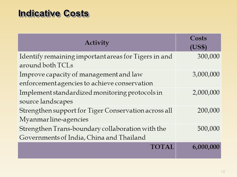 18 Indicative Costs Activity Costs (US$) Identify remaining important areas for Tigers in and around both TCLs 300,000 Improve capacity of management and law enforcement agencies to achieve conservation 3,000,000 Implement standardized monitoring protocols in source landscapes 2,000,000 Strengthen support for Tiger Conservation across all Myanmar line-agencies 200,000 Strengthen Trans-boundary collaboration with the Governments of India, China and Thailand 500,000 TOTAL6,000,000