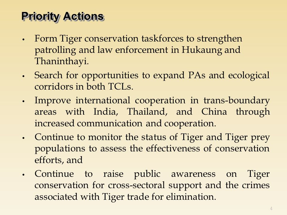 Form Tiger conservation taskforces to strengthen patrolling and law enforcement in Hukaung and Thaninthayi.