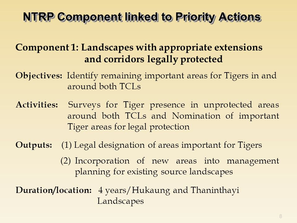 Component 1: Landscapes with appropriate extensions and corridors legally protected Objectives: Identify remaining important areas for Tigers in and around both TCLs Activities: Surveys for Tiger presence in unprotected areas around both TCLs and Nomination of important Tiger areas for legal protection Outputs: (1) Legal designation of areas important for Tigers (2)Incorporation of new areas into management planning for existing source landscapes Duration/location: 4 years/Hukaung and Thaninthayi Landscapes 8 NTRP Component linked to Priority Actions