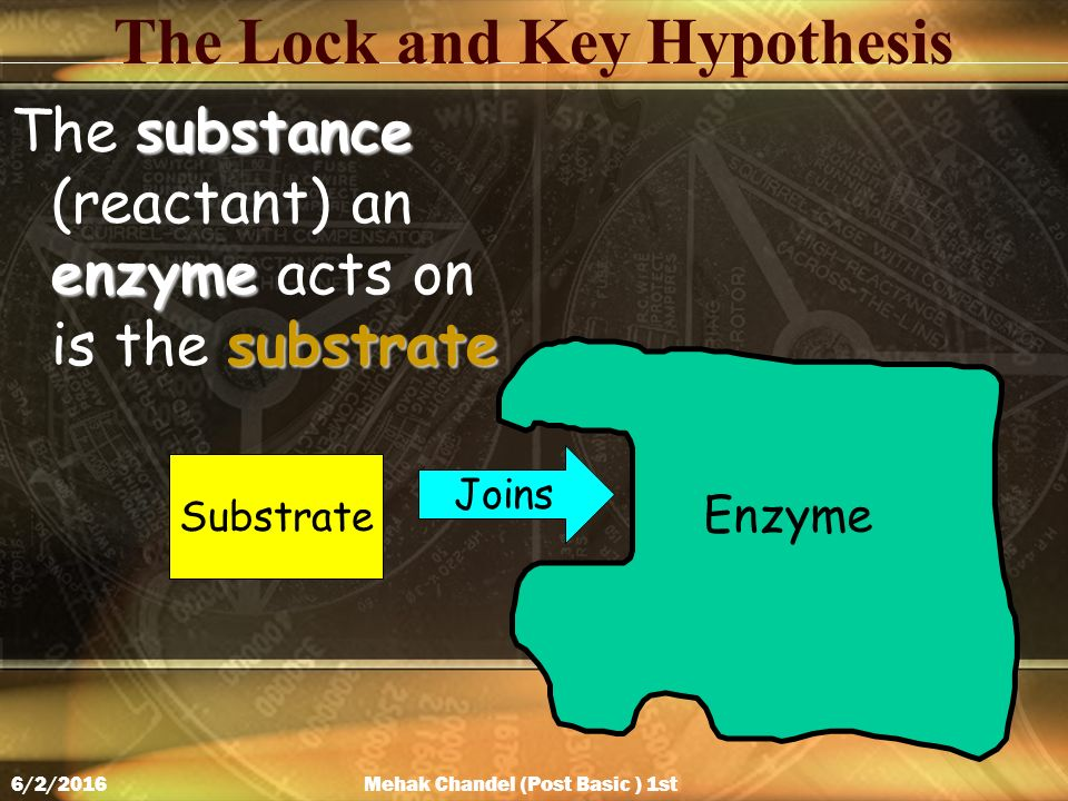 The Lock and Key Hypothesis substance enzyme substrate The substance (reactant) an enzyme acts on is the substrate Enzyme Substrate Joins Mehak Chandel (Post Basic ) 1st Year 6/2/2016
