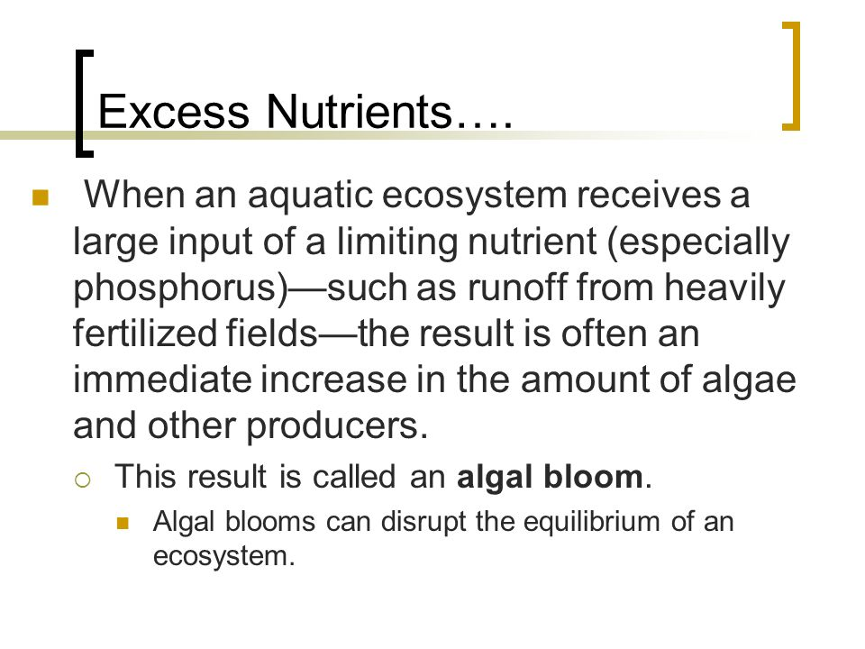 Excess Nutrients….