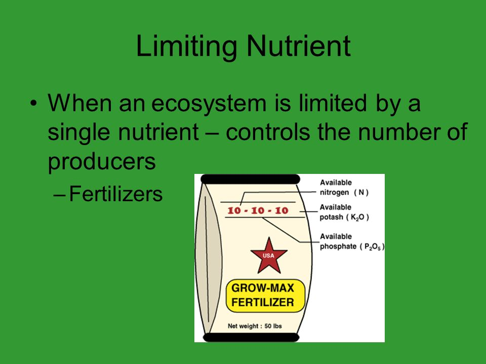 Limiting Nutrient When an ecosystem is limited by a single nutrient – controls the number of producers –Fertilizers