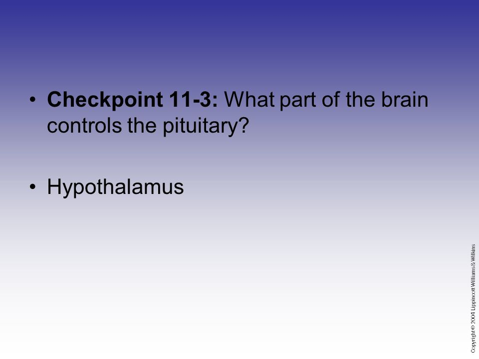 Copyright © 2004 Lippincott Williams & Wilkins Checkpoint 11-3: What part of the brain controls the pituitary.