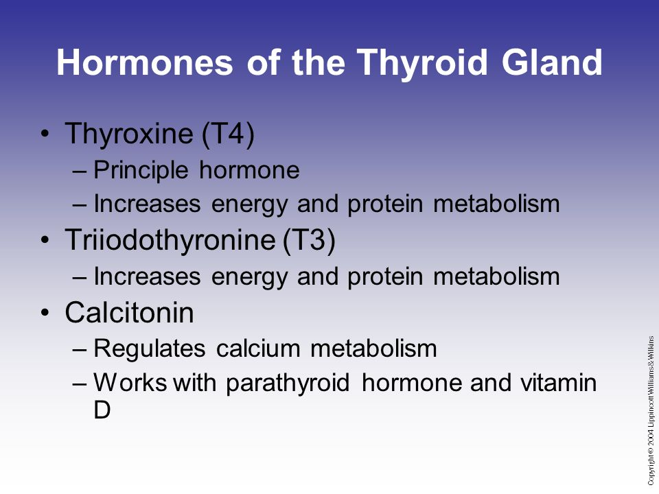 Copyright © 2004 Lippincott Williams & Wilkins Hormones of the Thyroid Gland Thyroxine (T4) –Principle hormone –Increases energy and protein metabolism Triiodothyronine (T3) –Increases energy and protein metabolism Calcitonin –Regulates calcium metabolism –Works with parathyroid hormone and vitamin D