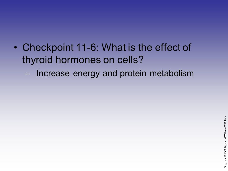 Copyright © 2004 Lippincott Williams & Wilkins Checkpoint 11-6: What is the effect of thyroid hormones on cells.