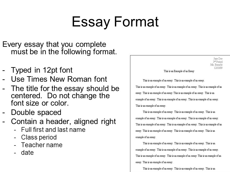Write my music essay examples