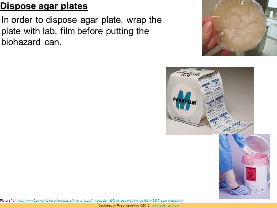 Breathtaking Disposal Of Agar Plates Images - Best Image Engine .  sc 1 st  tagranks.com & Breathtaking Disposal Of Agar Plates Images - Best Image Engine ...