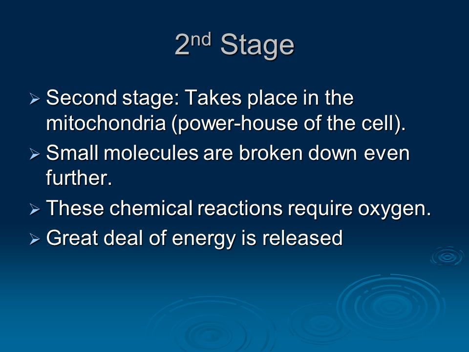 2 nd Stage  Second stage: Takes place in the mitochondria (power-house of the cell).