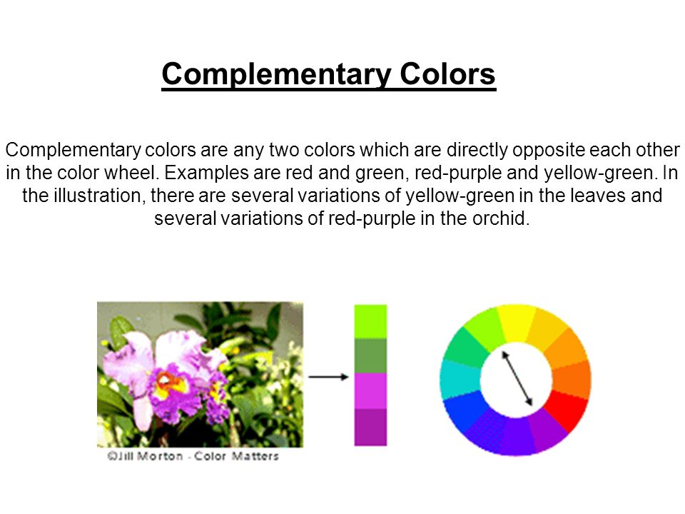 7 Complementary Colors Are Any Two