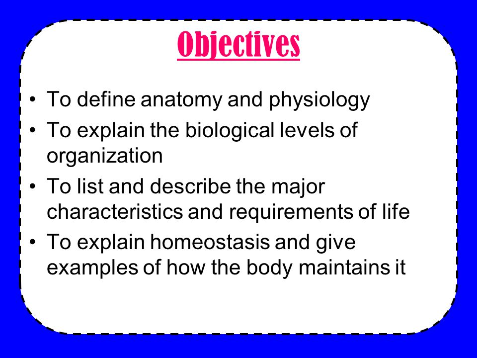 Anatomy Physiology Do Now Lets Review Some Biology How Are