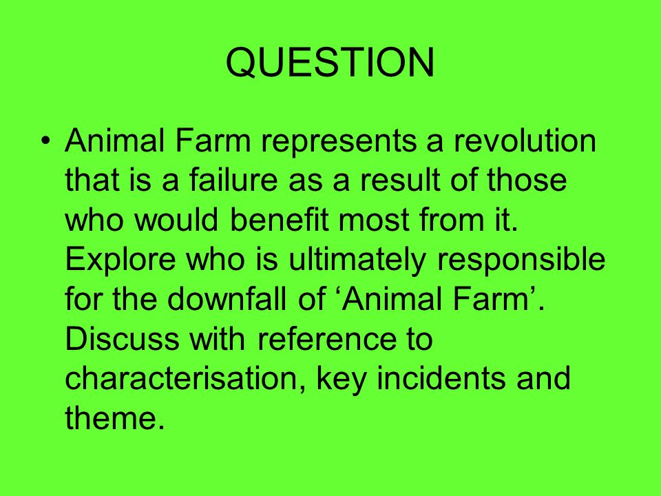 essay questions for animal dreams Essay about my dreams seems very easy to write, but if you don't properly know the writing structure, it will be really hard to get a good grade.