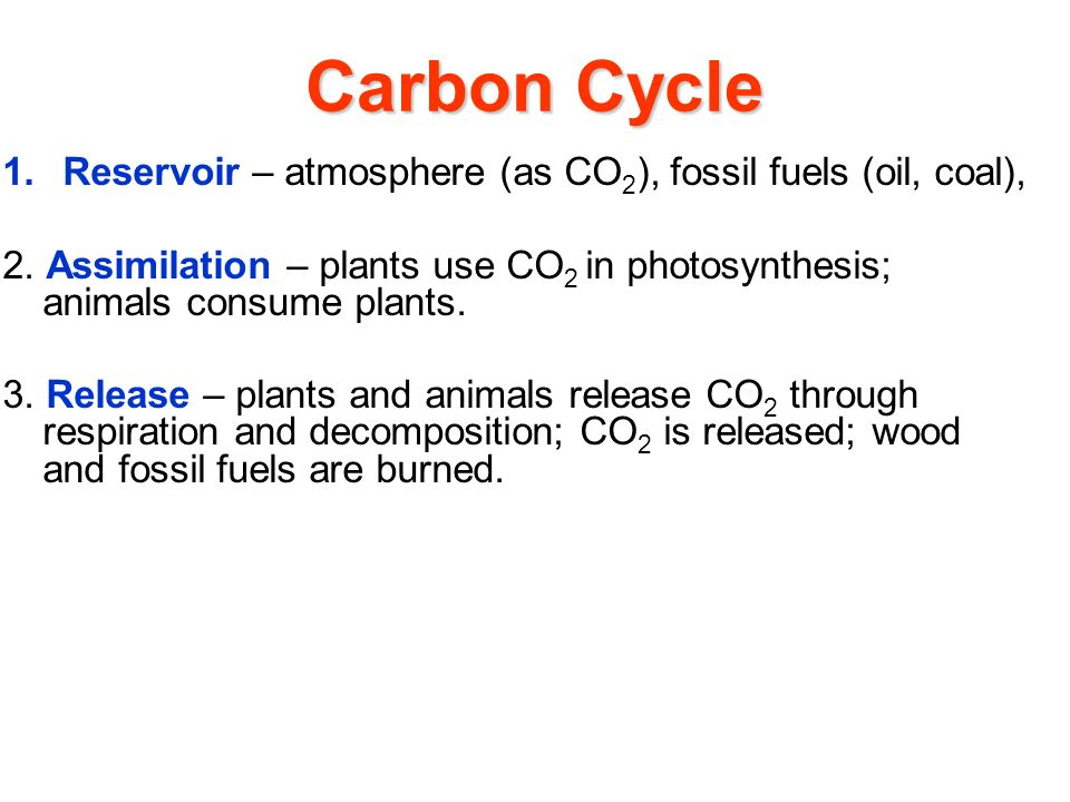 Carbon Cycle 1.Reservoir – atmosphere (as CO 2 ), fossil fuels (oil, coal), 2.