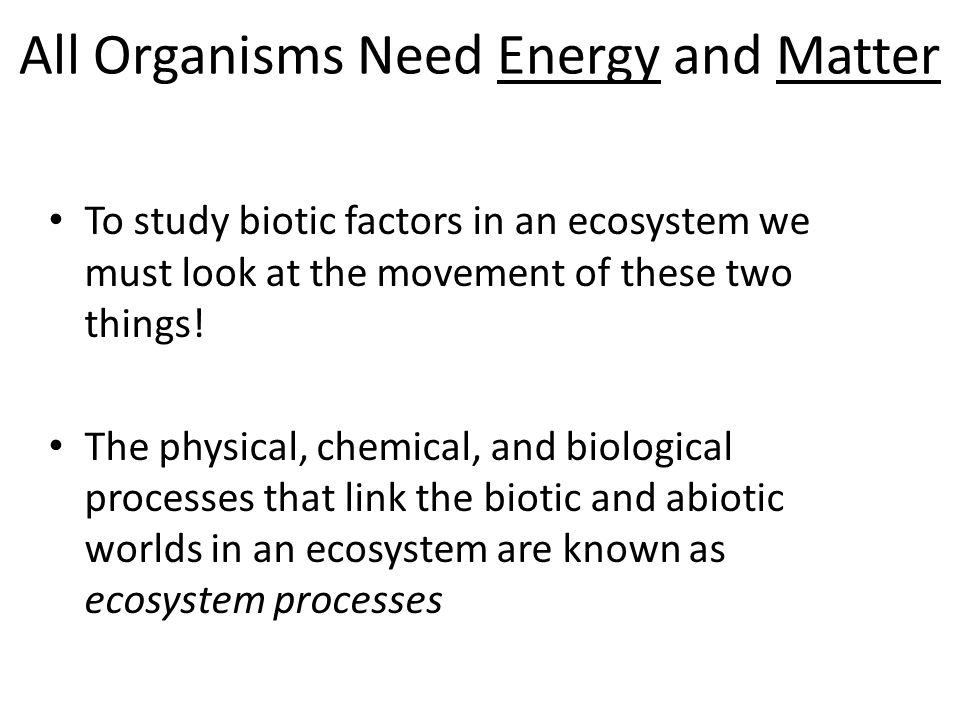All Organisms Need Energy and Matter To study biotic factors in an ecosystem we must look at the movement of these two things.