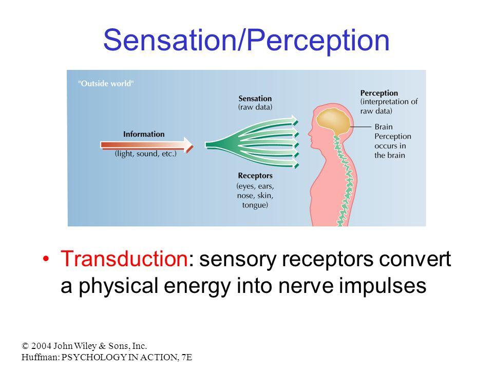 sensation and perception paper topics